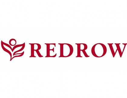 Redrow shines with Silver Award for Sustainability