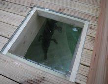 Romag's snappy crocodile glass bridge