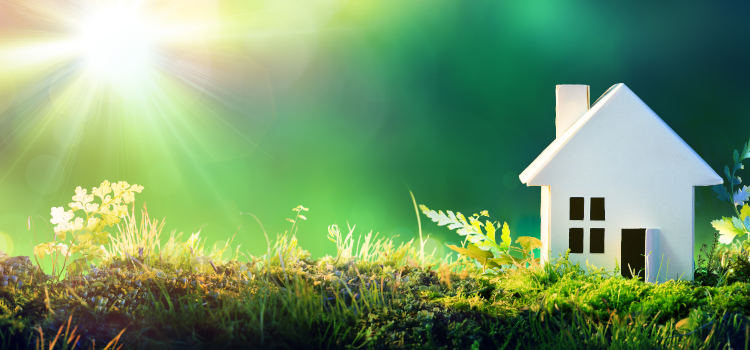 How to make your home be more eco-friendly – Composite Prime
