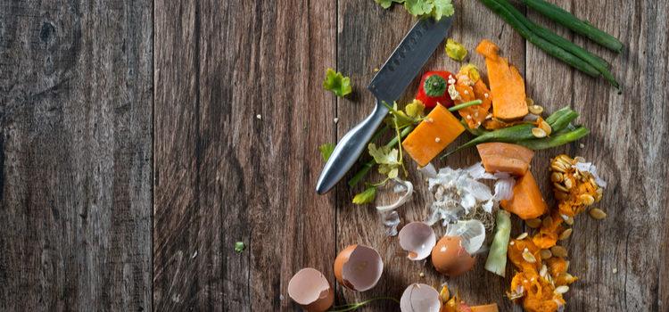 InSinkErator creates infographic to illustrate food waste problem
