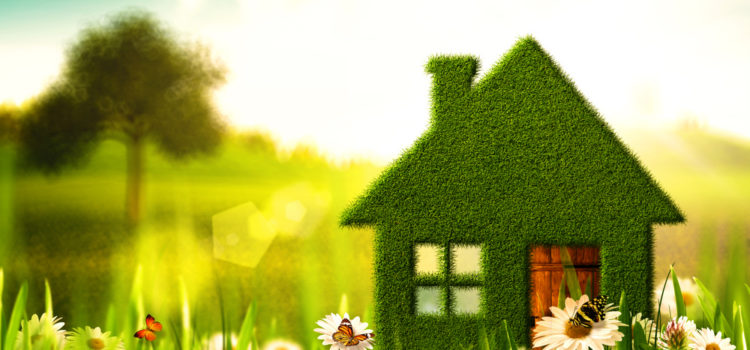 £2bn green homes grants